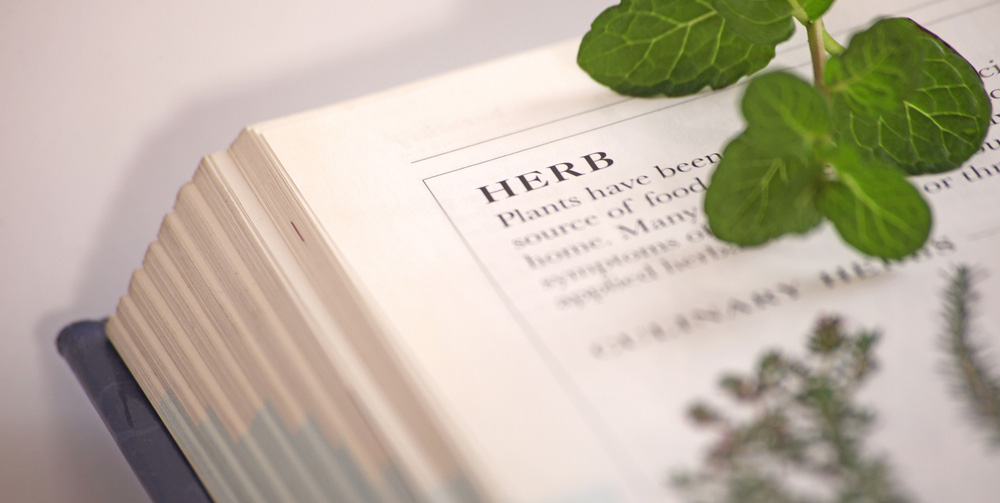 Herbal History of Diabetes